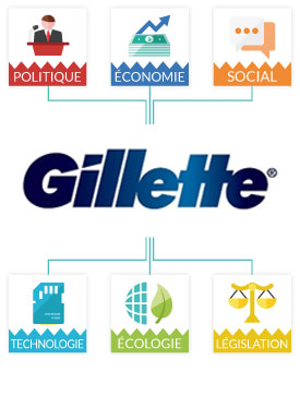 Matrice Pestel Gillette