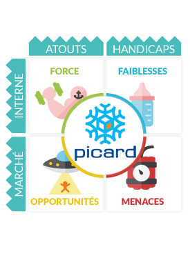 Diagnostic Strat�gique Picard