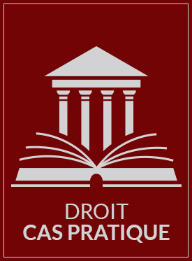 droit en thesis Cas/das en droit du sport choosing a thesis subject the thesis subject can be chosen freely, so long as it is original and of academic interest.