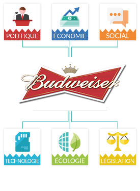 Analyse PESTEL Budweiser