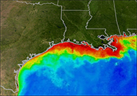Localisation zone morte Golfe du Mexique - Credit: NOAA