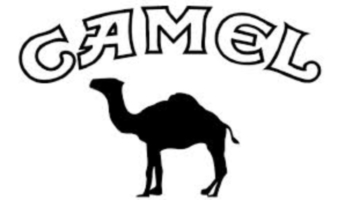 Logo chameau Camel