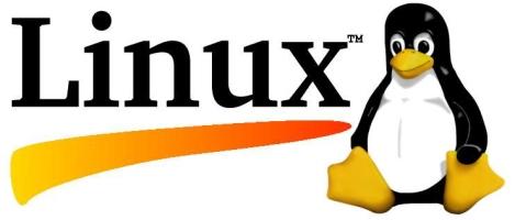 Logo pingouin Linux