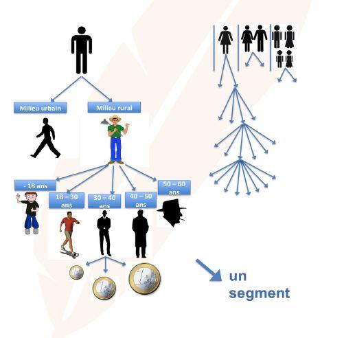 Organigramme segmentation et le ciblage des clients - Economie/Droit - Seconde Pro